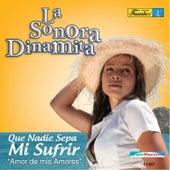 Que Nadie Sepa Mi Sufrir - Amor de Mis Amores by La Sonora Dinamita