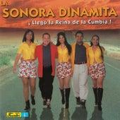 Llego la Reina de la Cumbia by La Sonora Dinamita