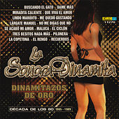 Play & Download Dinamitazos de Oro - Decada de los 80s, Vol. 2 by La Sonora Dinamita | Napster