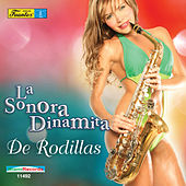 Play & Download De Rodillas by La Sonora Dinamita | Napster