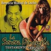 Testamento Explosivo - Herencia Musical de Lucho by La Sonora Dinamita