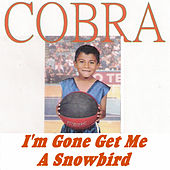 Play & Download I'm Gone Get Me a Snowbird by Cobra | Napster