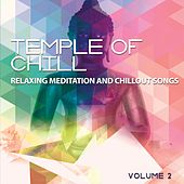 Play & Download Temple of Chill, Vol. 2 (Relaxing Meditation and Chillout Songs) by Various Artists | Napster
