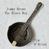 Jimmy Brown The Blues Boy by Tim O'Brien