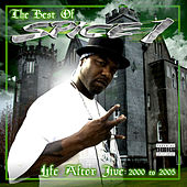 Life After Jive by Spice 1