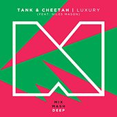 Play & Download Luxary (Radio Edit) [feat. Niles Mason] by Tank | Napster