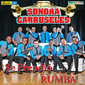 Play & Download Se Prendió la Rumba by La Sonora Carruseles | Napster