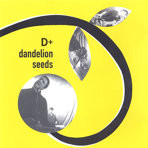 Dandelion Seeds by D+