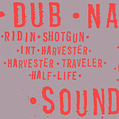 Ridin' Shotgun by Dub Narcotic Sound System