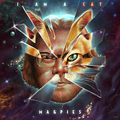 I Am a Cat by Magpies