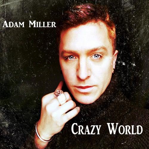 Crazy World by Adam Miller