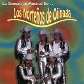 Play & Download La Sensacion Musical de... by Nortenos De Ojinaga | Napster