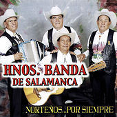 Play & Download Nortenos... Por Siempre by Hnos. Banda de Salamanca | Napster