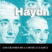 Los Grandes de la Musica Clasica - Joseph Haydn Vol.  3 by Various Artists