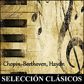 Selección Clásicos - Chopin, Beethoven, Haydn by Various Artists