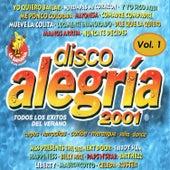 Disco Alegría 2001 Vol. 1, Éxitos del Verano by Various Artists