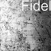 Soldiers Don't Cry (From Awol) by Fidel