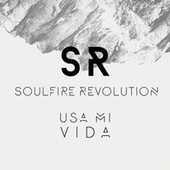 Play & Download Usa Mi Vida by Soulfire Revolution | Napster