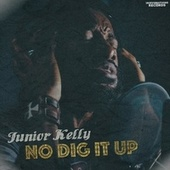 No Dig It Up by Junior Kelly