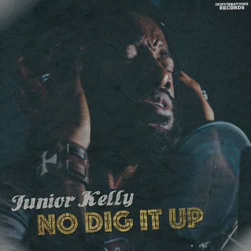 Play & Download No Dig It Up by Junior Kelly | Napster