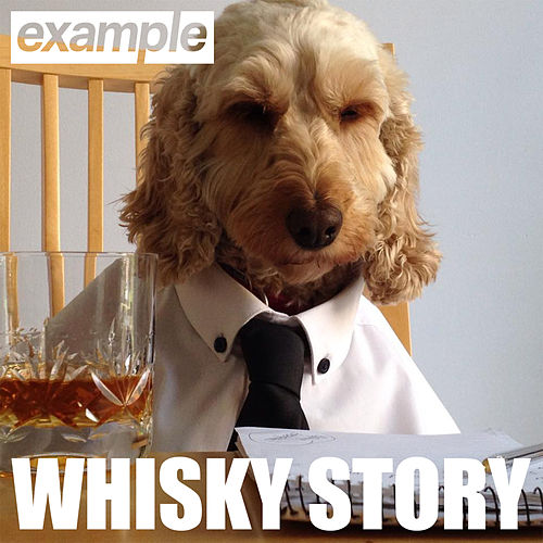 Play & Download Whisky Story by Example | Napster