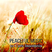 Play & Download Peaceful Music to Cure Insomnia - Background Music for Inner Peace, Well Being, Classical Piano, Calming Music, Insomnia Help Sleeping Music, Dealing with Stress by Relaxing Piano | Napster