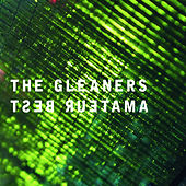 Play & Download The Gleaners by Amateur Best | Napster
