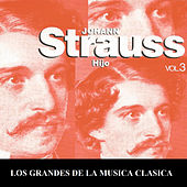 Los Grandes de la Musica Clasica - Johann Strauss Vol. 3 by Various Artists