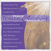 Play & Download Songs of Peace and Tranquility by Various Artists | Napster