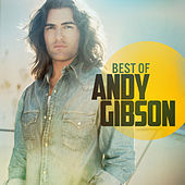 Play & Download Best Of by Andy Gibson | Napster
