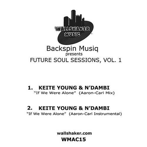 Backspin Musiq presents Future Soul Session, Vol. 1 by N Dambi