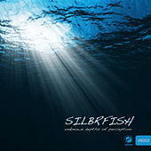 Unknown Depths Of Perception by Silbrfish