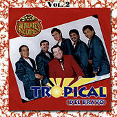 Play & Download 24 Kilates de Exitos, Vol. 2 by Tropical Del Bravo | Napster