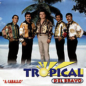 Play & Download A Caballo by Tropical Del Bravo | Napster