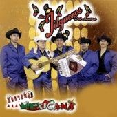 Play & Download Norteno a la Mexicana by Los Jilgueros Del Arroyo | Napster