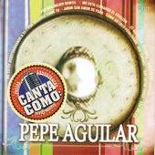 Play & Download Canta Como - Sing Along: Pepe Aguilar by Mariachi Garibaldi | Napster