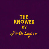 The Knower by Youth Lagoon