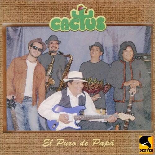 Play & Download El Puro de Papá by Cactus | Napster