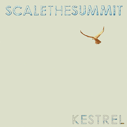 Play & Download Kestrel by Scale the Summit | Napster
