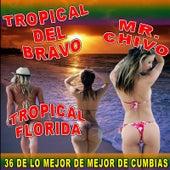 Play & Download 36 De Lo Mejor De Mejor De Cumbias by Various Artists | Napster