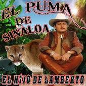 Play & Download El Hijo De Lamberto by El Puma De Sinaloa   Napster