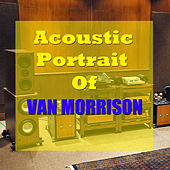 The Acoustic Portrait of Van Morrison by Wildlife