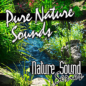 Pure Nature Sounds by Nature Sound Series