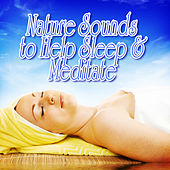 Play & Download Nature Sounds to Help Sleep and Meditate by Nature Sound | Napster