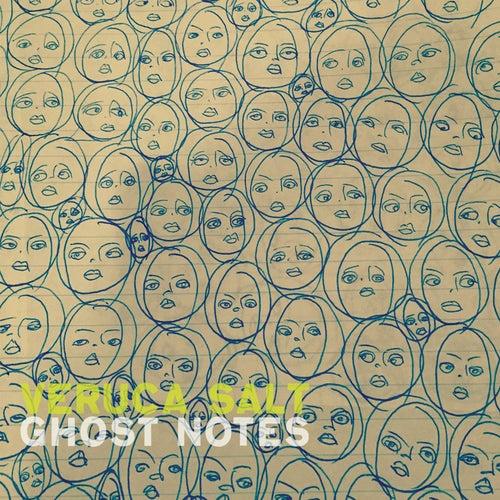 Ghost Notes by Veruca Salt