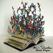 Play & Download Book of Life by Mr. Shadow | Napster