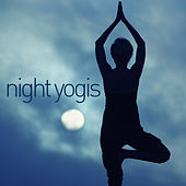 Night Yogis by Various Artists