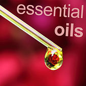 Play & Download Essential Oils by Various Artists | Napster