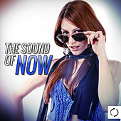 The Sound of Now by Various Artists