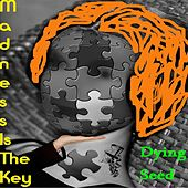 Play & Download Madness Is the Key by Dying Seed | Napster